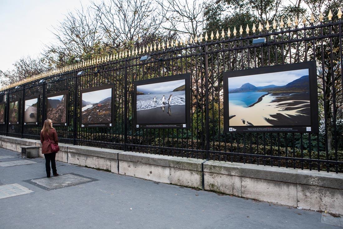 Voyage aux les de la desolation l expo fran ois lepage photographie - Jardin du luxembourg exposition ...