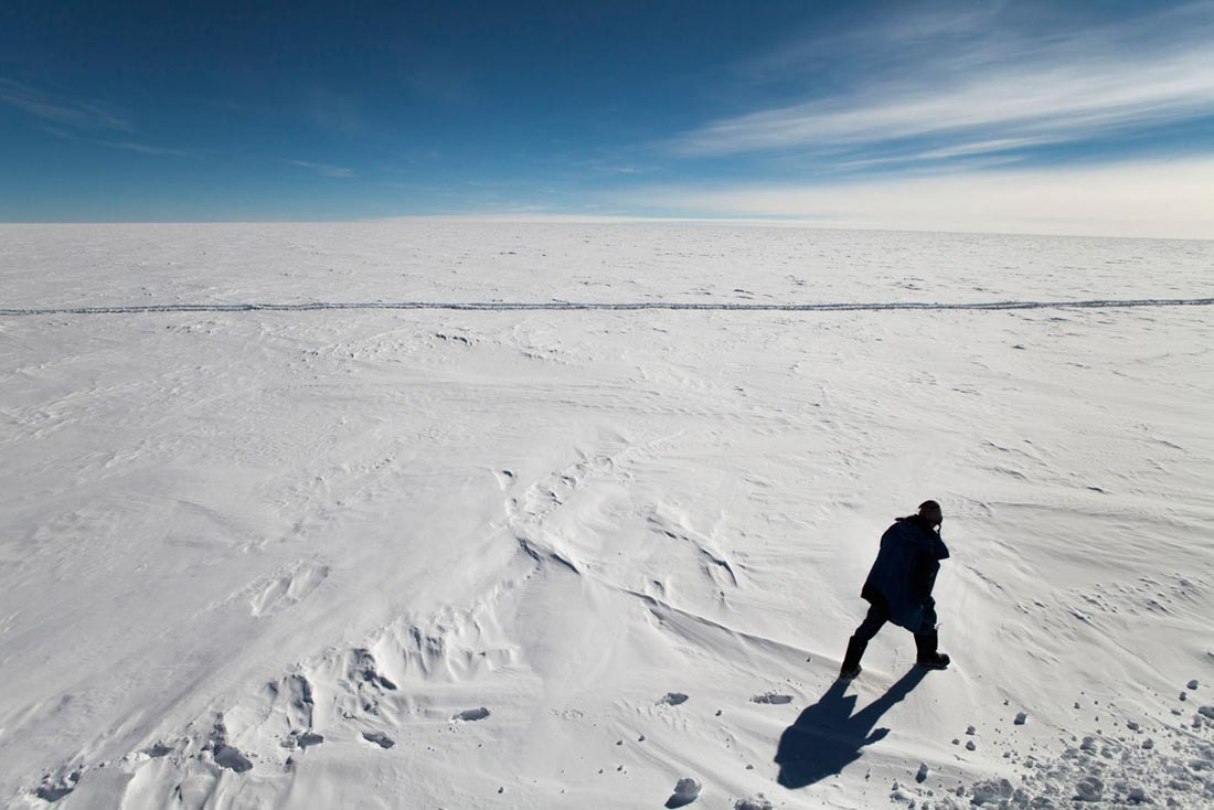 Antarctica -  Raider walking on the ice cap next to the supply convoy for Concordia research station on his way over the continental plateau of Antarctica.